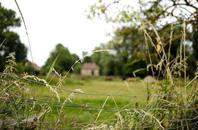 volný pozemek